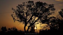 Amanecer en Puerto Rico by Elisanel Santiago (BlackRose)