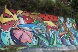 Mural 413, Rincon by Martín Candelario